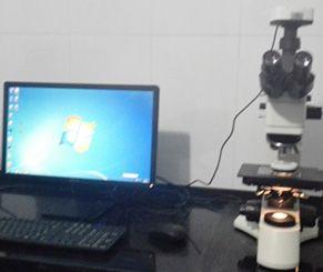 清洁实验室